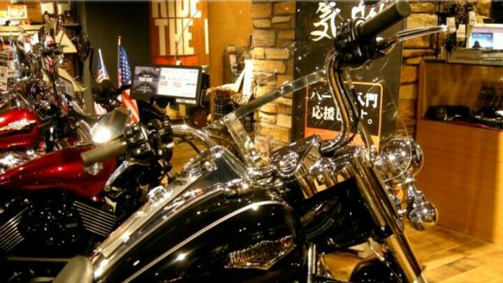 Sebanyak 14 varian Harley-Davidson akan segera diluncurkan dengan harga lebih miring. (foto : ist)