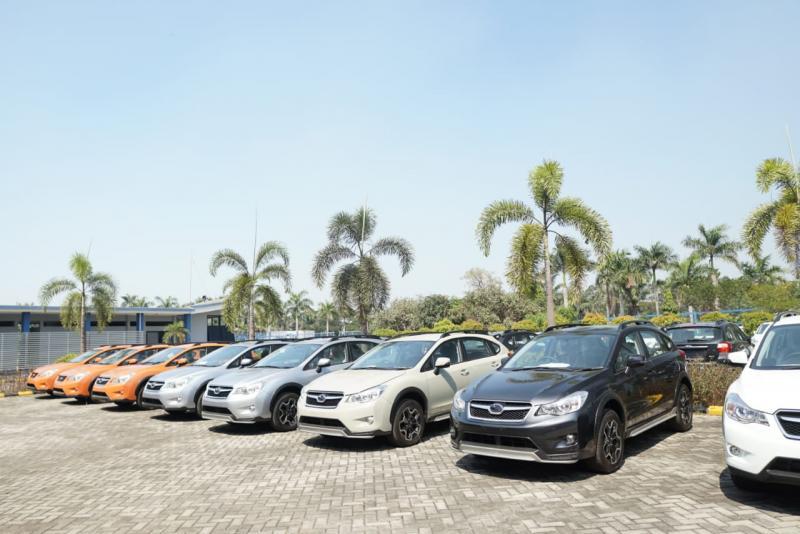 Ratusan mobil Subaru hasil sitaan dilelang oleh Bea Cukai