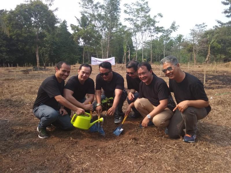 Jajaran Direksi CIMB Niaga Auto Finance melakukan penanaman simbolis 50 ribu bibit pohon sengon di Kabupaten Serang, Banten. (anto)